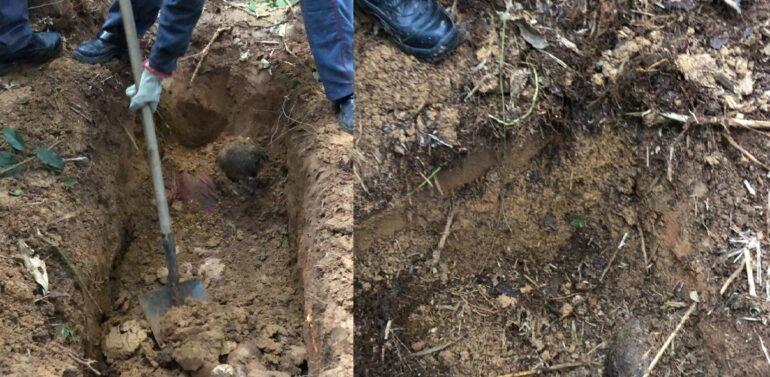 Restos mortais de homem desaparecido são encontrados em Araquari
