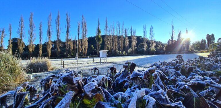 Santa Catarina registra temperatura abaixo de zero
