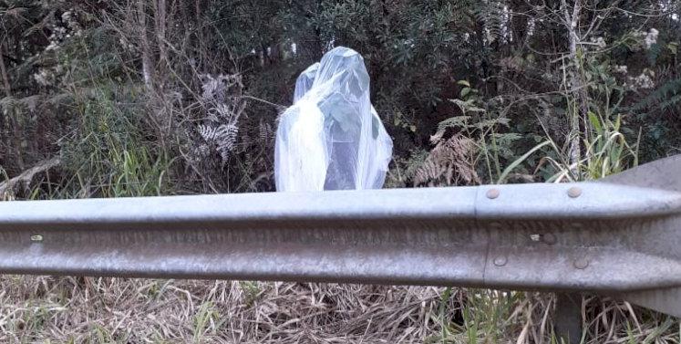Motoqueiro sofre acidente após se assustar com 'noiva' em rodovia no Oeste