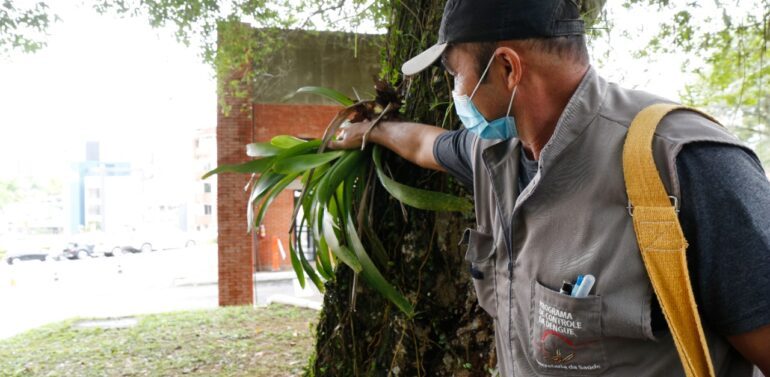 Araquari realiza mutirão de combate a dengue no Itinga
