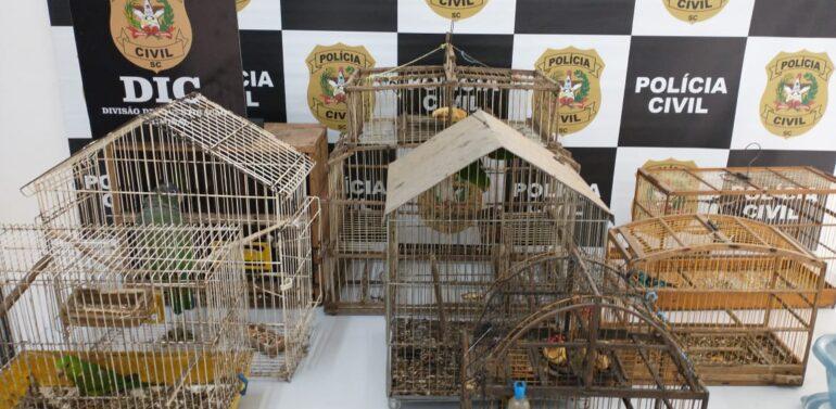 Polícia Civil apreende 12 animais silvestres no Vila Nova