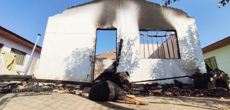 Cão espera donos em casa destruída por incêndio