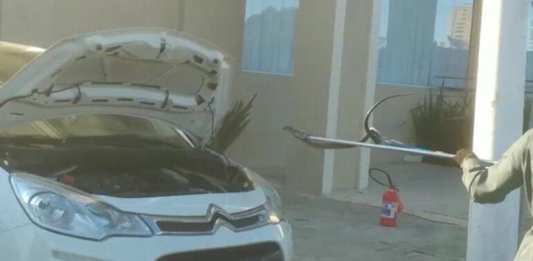 Cobra é retirada de capô de carro no Litoral Norte