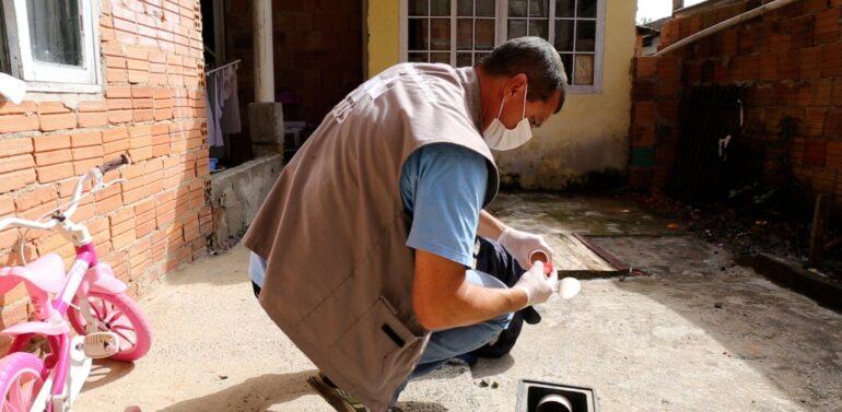 Quintais das residências são os principais locais geradores da dengue