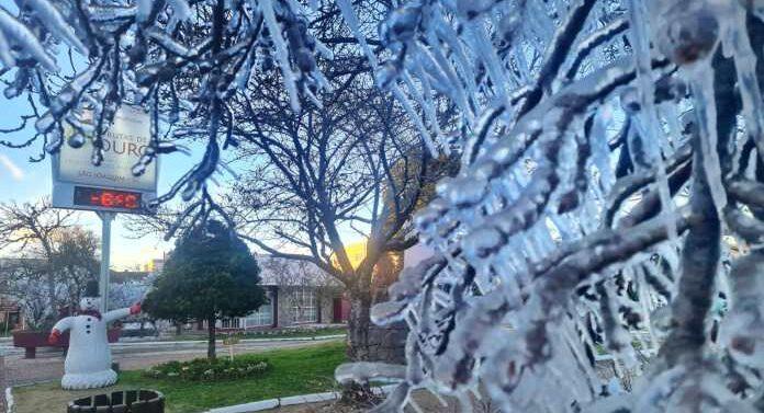 Fotos: Estado registra temperaturas negativas e frio segue intenso com possibilidade de neve