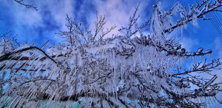 Com chegada de frio intenso, SC amanhece com -7ºC