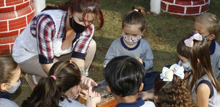 CEIs de Joinville participam da 10ª Semana da Educação Infantil