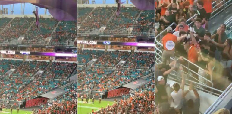 VÍDEO : Gato é salvo por torcedores ao cair de teto de estádio em arquibancada nos EUA