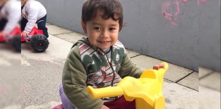 Menino de 2 anos morre após picada de bicho peçonhento