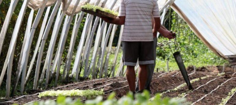 Prefeitura oferece cursos gratuitos para produtores rurais